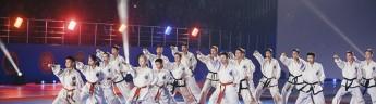 В Подмосковье при поддержке INGRAD открылся международный фестиваль боевых искусств