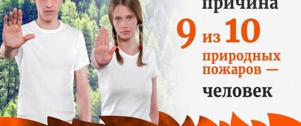 В России стартовала кампания против самовольных палов травы и рукотворных лесных пожаров «Останови огонь!