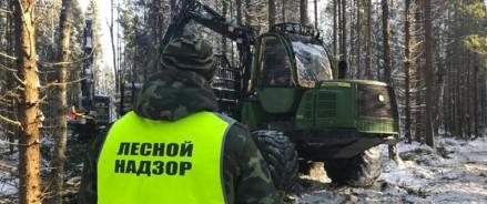 В Архангельской области апробируют новые подходы лесного надзора