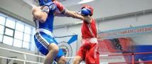 В Свердловской области планируется открытие Центра бокса