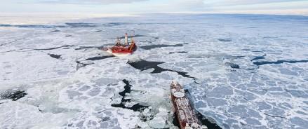 В Арктической зоне – три новых резидента от Архангельской области