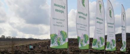 В память о подвиге татарстанцевучастники акции «Сад памяти»высадят 350 тысяч саженцев