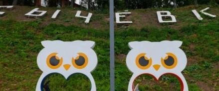 Городской парк в Сычёвке превратят в «Парк Сыча»