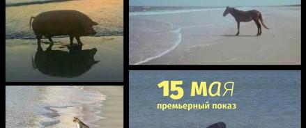 Спектакль Фёдора Курёхина «Энтропия» снова в нашем Центре