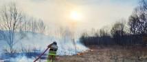 В 58 муниципальных образованиях Красноярского края введен особый противопожарный режим