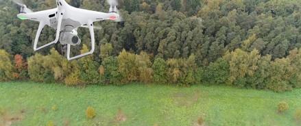 В Архангельской области усилили патрулирование лесов, в том числе с помощью беспилотников