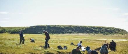 В Красноярском крае будут собирать арктические урожаи