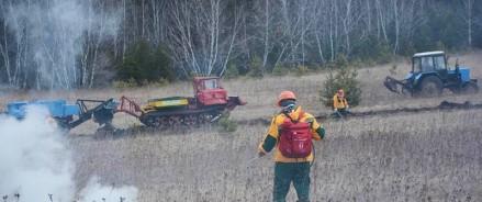 В Красноярском крае ликвидировали 12 лесных пожаров