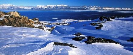Еще две компании Архангельской области стали резидентами Арктической зоны с инвестициями 210,9 млн рублей