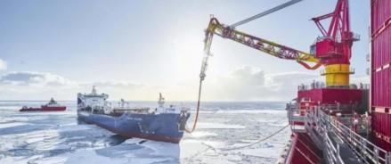 Еще две компании Архангельской области стали резидентами Арктической зоны с инвестициями 73,5 млн рублей