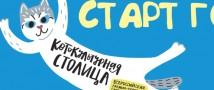 20 мая открывается голосование по Всероссийской премии-переписи служебных котов «Котокультурная столица»!