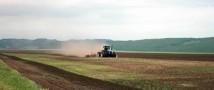 Посевная в Красноярском крае выходит на финишную прямую