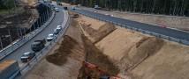 В Минлесхозе Татарстана ведутся работы к проведению лесовосстановления в рамках строительства трассы М-12 «Москва – Казань»