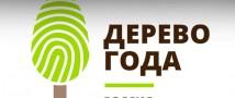 Выбираем Российское дерево года 2021!