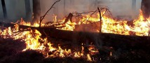 Пожары в Тюменской области будут контролировать