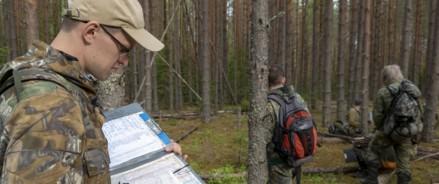 В Архангельской области началась перепись лесов