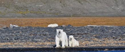 В национальном парке «Русская Арктика» в Архангельской области после годичного перерыва открывается туристический сезон
