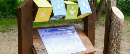 В новой школе Щелково будет экологическая тропа и зооуголок