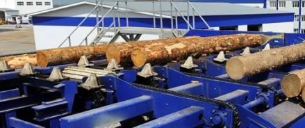 Более 171 млрд рублей планируют инвестировать в развитие предприятий участники лесопромышленного кластера Поморья