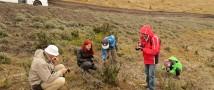 Новый учебный курс, посвященный горячим точкам биологического разнообразия, появится в программе географического факультета МГУ