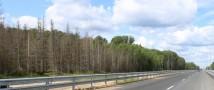 М8 должна войти в число трасс, которые получат стопроцентное покрытие сотовой связью – губернатор Архангельской области