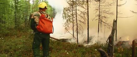 На тушение и авиамониторинг лесных пожаров Архангельской области дополнительно выделили более 93 млн рублей федеральной субвенции