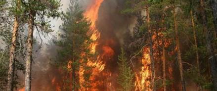 Пожарные Поморья помогут Якутии справиться с лесными пожарами