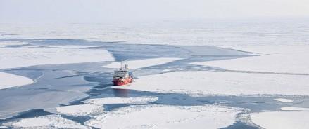Зарегистрирован 50-й резидент Арктической зоны в Архангельской области