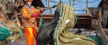 Александр Цыбульский назвал приоритетом подготовку кадров для рыбной отрасли Поморья