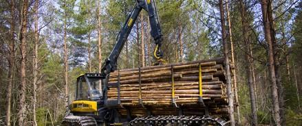 В Архангельскую область поступило 36 единиц лесохозяйственной техники