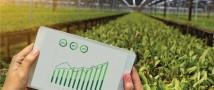 Предприниматель из Татарстана создал меркетплейс для аграриев