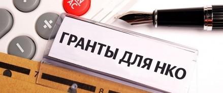 В Татарстане для НКО выделено 35 миллионов рублей