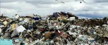 В Вологде рекультивируют несанкционированную городскую свалку