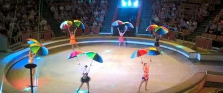 Реконструкция цирка в Твери обойдется в 1,4 млрд