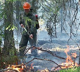 в забайкалье бушуют лесные пожары