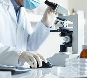 Современную работу в области физико-химической биологии выполнили российские ученые