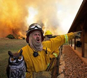 Техас тревожит больше чем шесть десятков лесных пожаров.