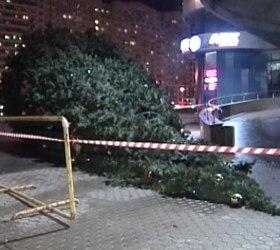 Очередное штормовое предупреждение объявлено в Петербурге
