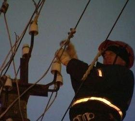 На Алтае лесоруб оставил без электричества 50 тыс. жителей