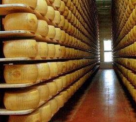 Роспотребнадзор вводит запрет на ввоз украинских молочных продуктов
