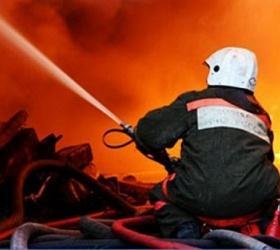 В Подмосковье на пожаре погибла семья из 9 человек