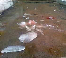 В Пермском крае льдина пробила ребенку голову