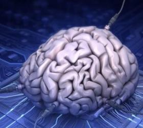 Немецким ученым удалось найти способ восстановления утерянной с возрастом памяти