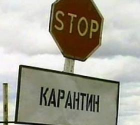 На Алтае семеро человек заболели сибирской язвой