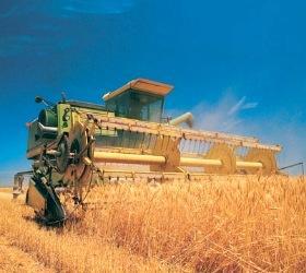 Собрано больше 1,5 млн тонн зерна