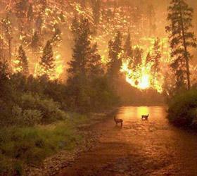 Пожар в Испании