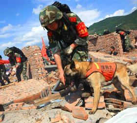Число жертв землетрясения, произошедшего в южной части Китая возросло до 64 человек