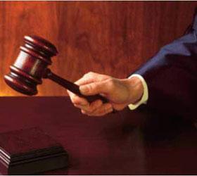 Московский суд отказал жительнице Новосибирска в иске к Пуси Райт