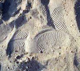 Добыча песка в Анапе