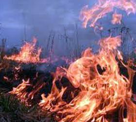 Пожары на Камчатке